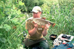 River Don Barbel 6lb 3oz